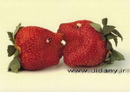 http://seebuy.persiangig.com/image/yalda/024.jpg