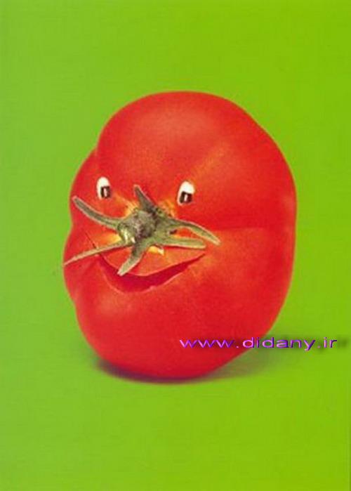 http://seebuy.persiangig.com/image/yalda/032.jpg